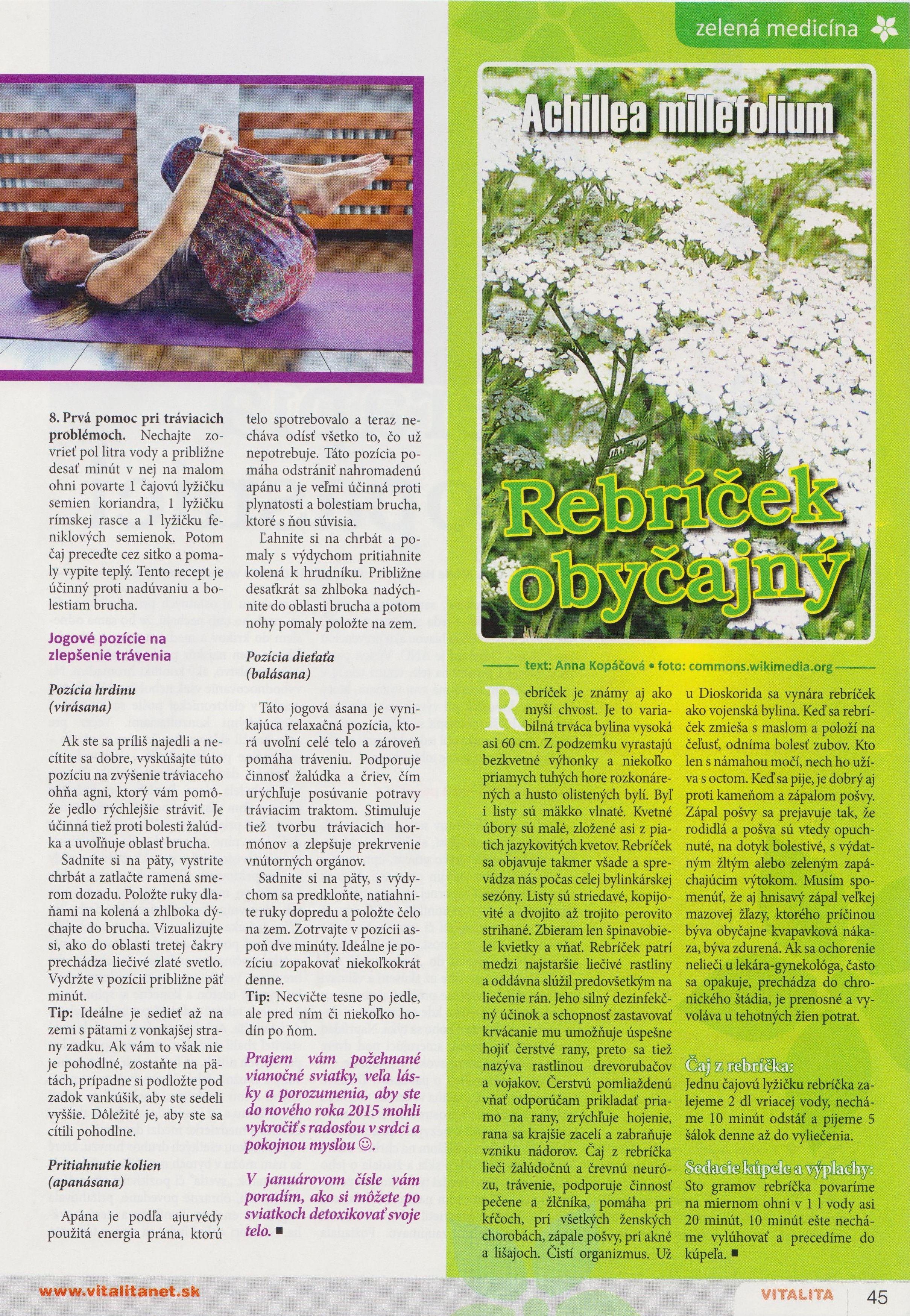 Vitalita 12_2014 - Ako pomôcť tráveniu počas sviatkov_str.2