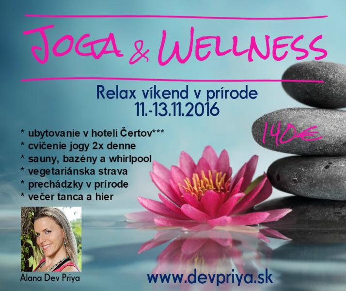 Joga & Wellness s Dev Priyou